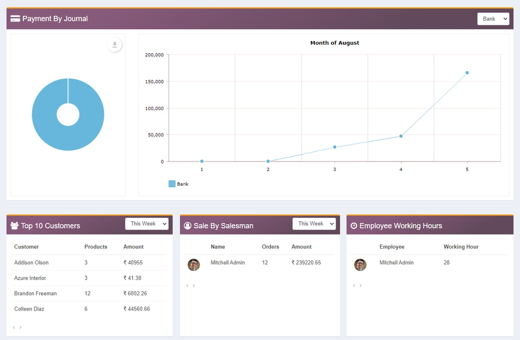 Payment by journal - You can see payment status - bank and cash in line graph and pie chart, sale by sales by salesman and working hours of employee.